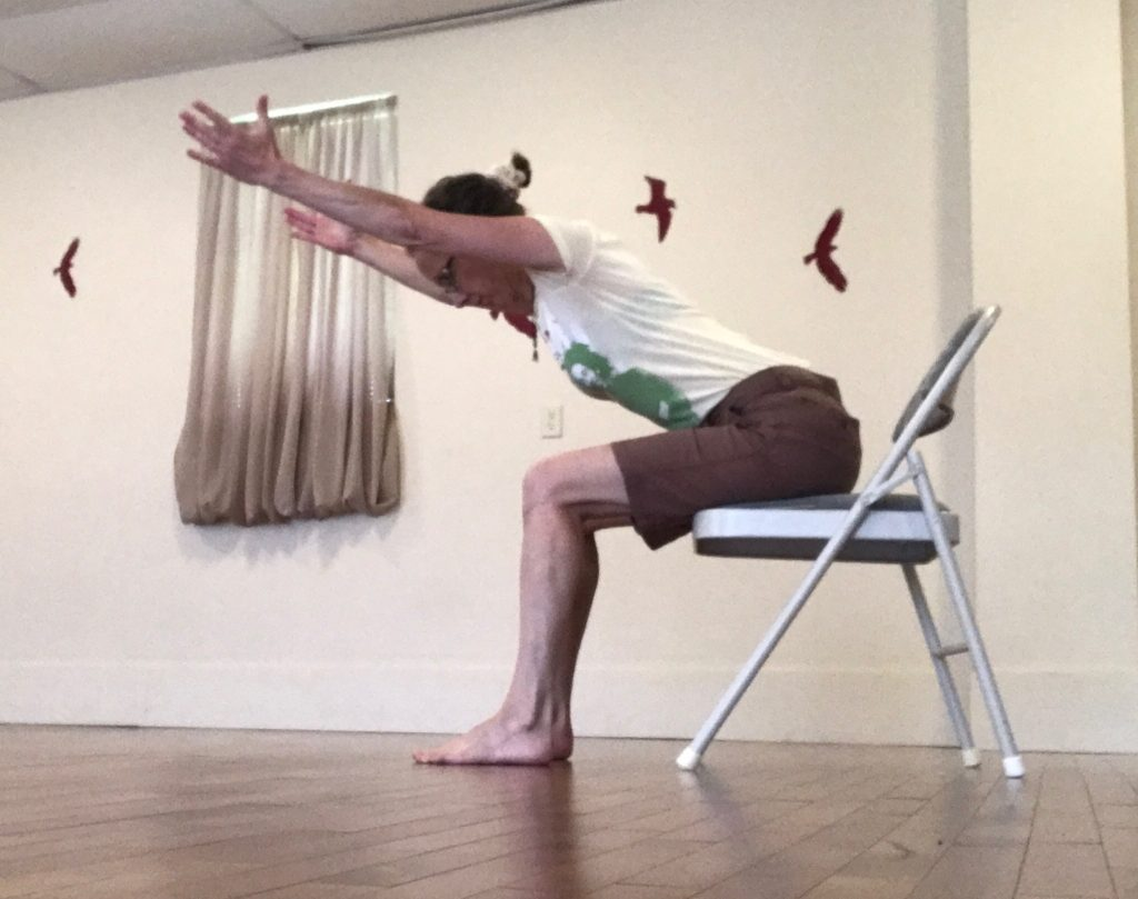 Sitting Plank - Spine Straight